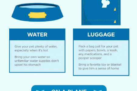 Tips for Traveling with Your Pet Infographic
