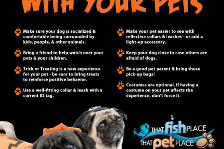 Tips for Trick or Treating With Your Pets Infographic