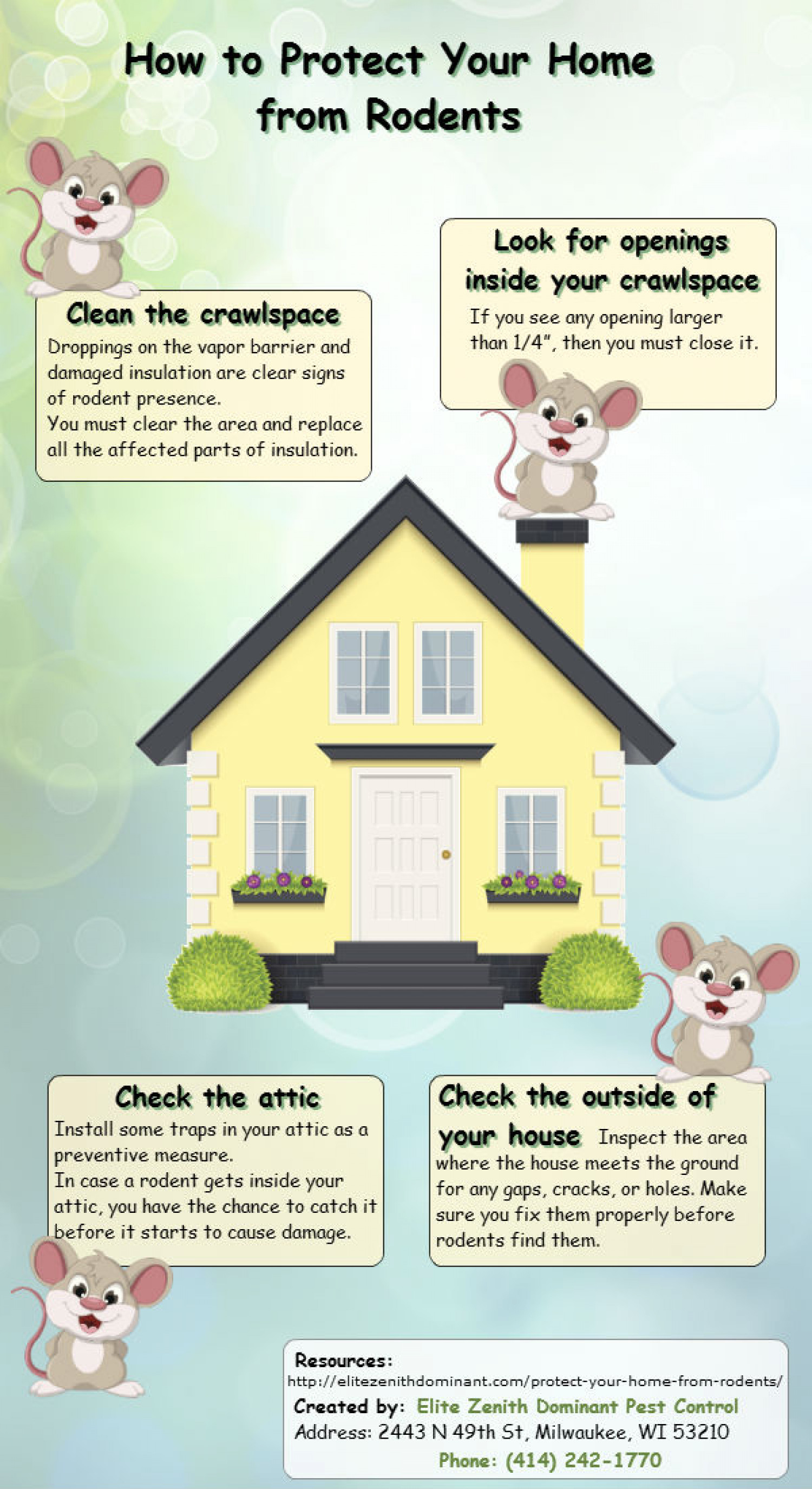 How to Protect Your Home From Rodents Infographic