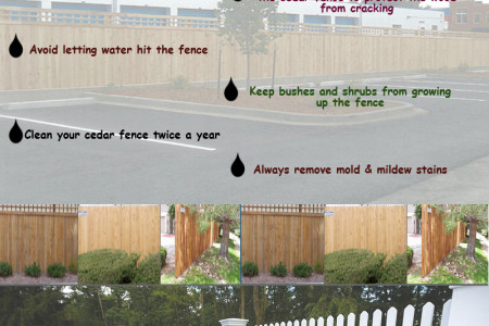 Tips to Maintain Your Cedar Wood Fence Infographic