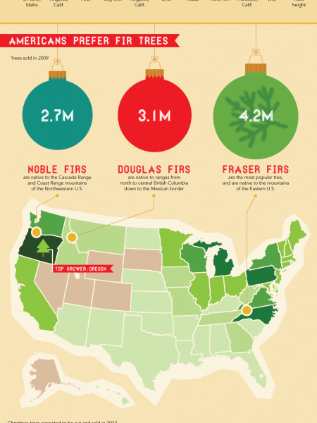 'Tis The Season For Christmas Trees Infographic