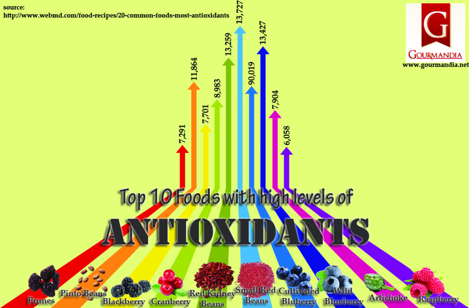 Top 10 Foods with High Levels of Antioxidants Infographic