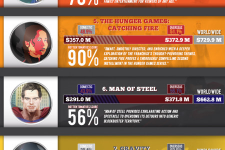 Top 10 Grossing Movies 2013 Infographic