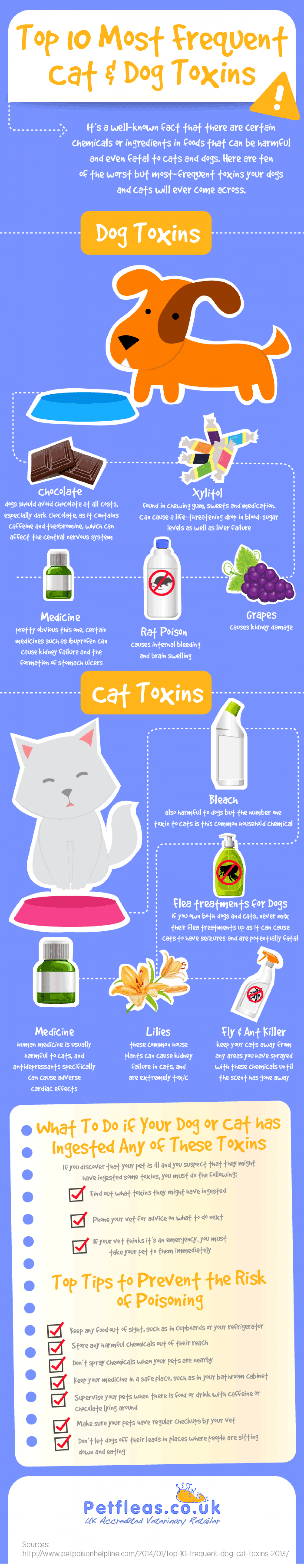 Top 10 Most Frequent Cat & Dog Toxins Infographic