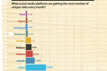 Top 10 Most Popular Social Networks 2013 Infographic