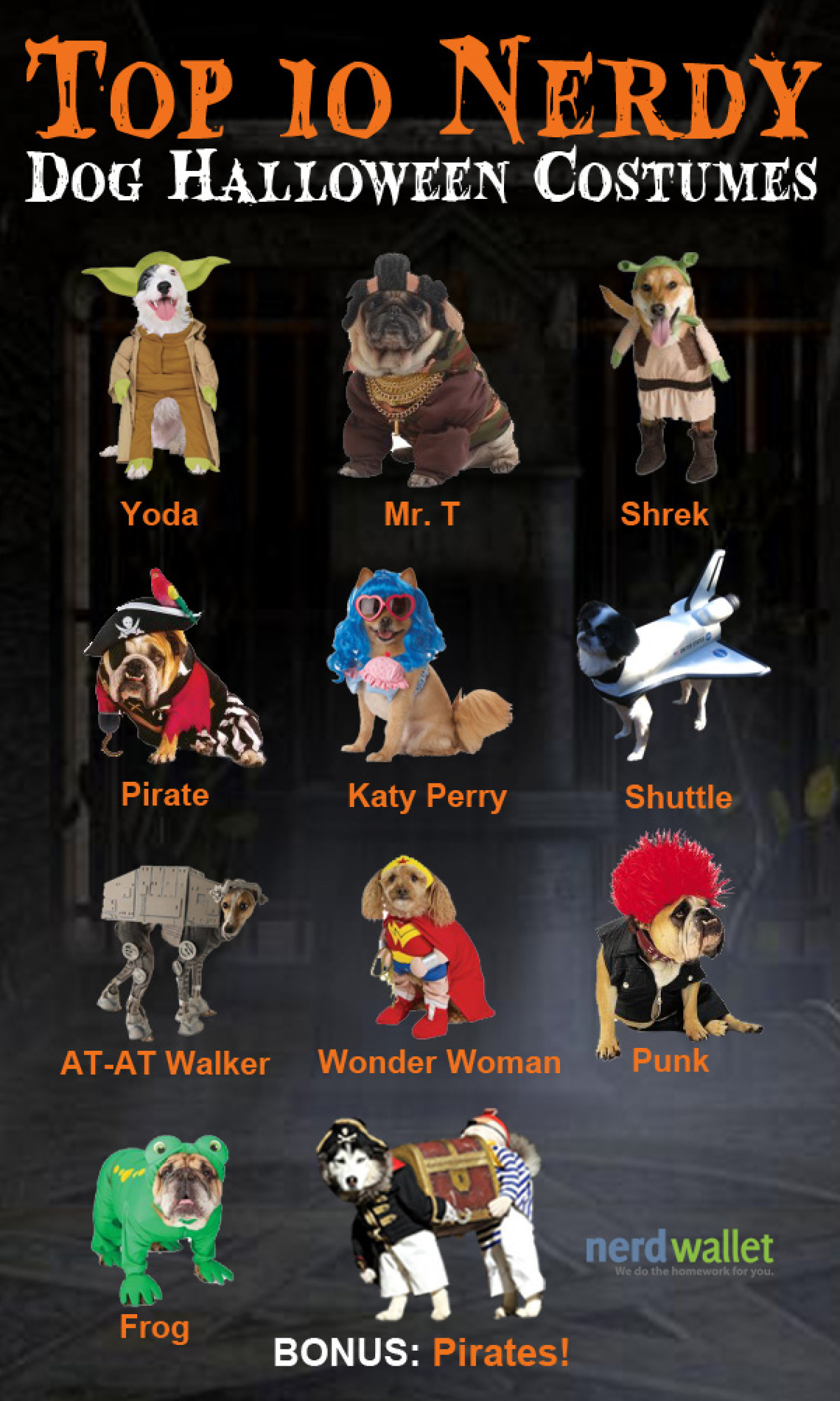 Top 10 Nerdy Halloween Costumes For Dogs Infographic