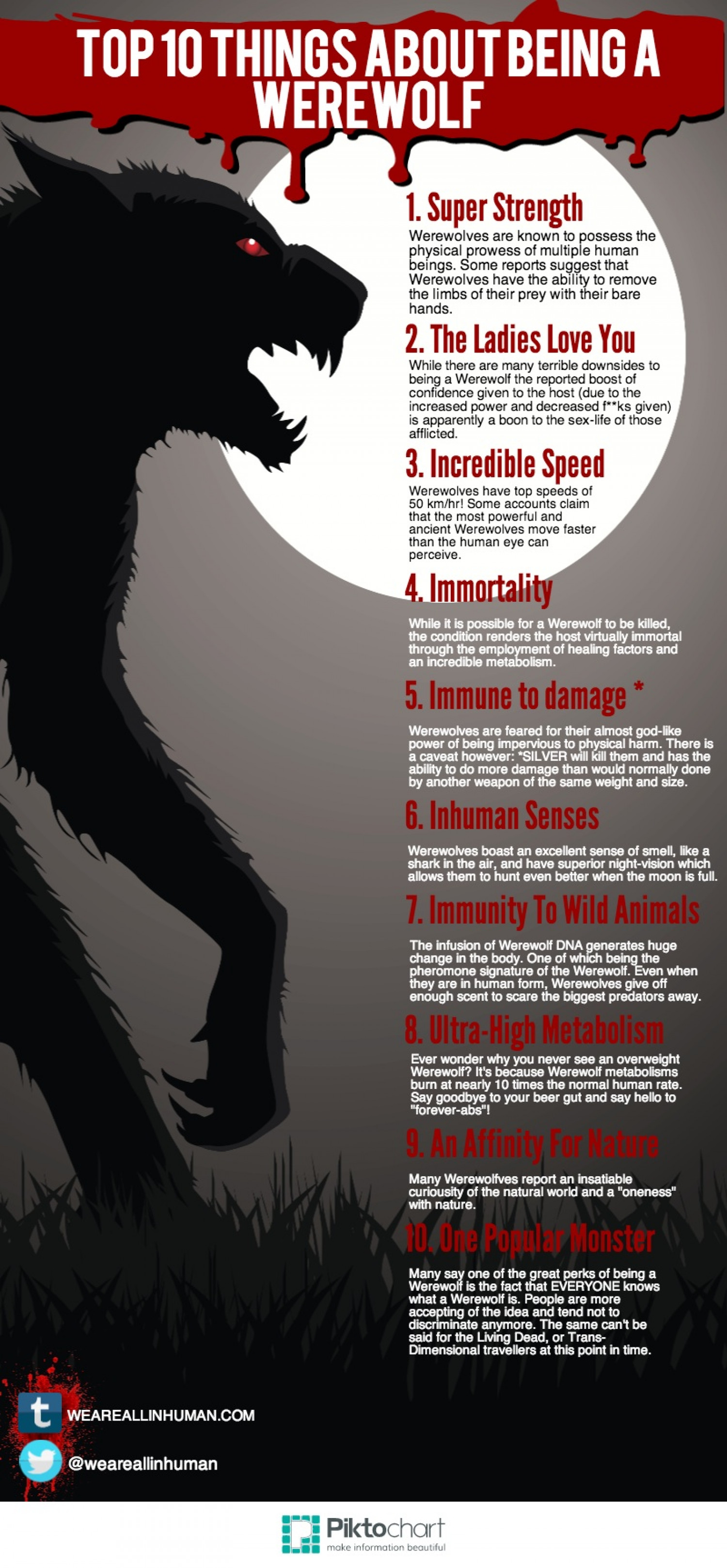 Top 10 Things About Being a Werewolf Infographic