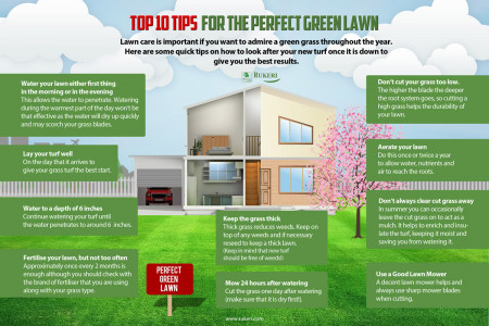 Top 10 Tips For The Perfect Green Lawn Infographic