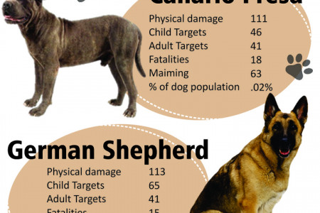 Top 11 Most Dangerous Dogs Regarding Number of Attacks and Deaths Infographic