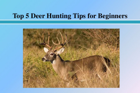 Top 5 Deer Hunting Tips for Beginners Infographic