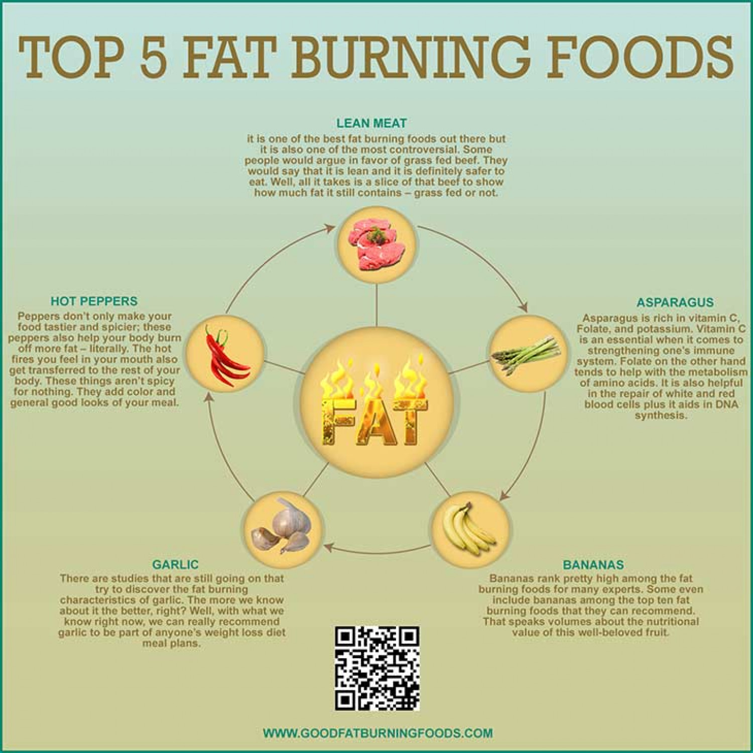 Top 5 Fat Burning Foods Infographic