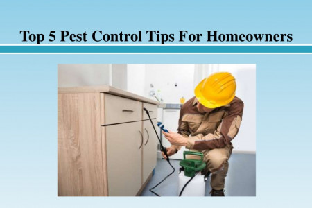 Top 5 Pest Control Tips For Homeowners Infographic