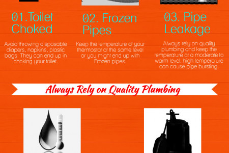 Top 5 Plumbing Problems Commonly Faced At Every Home Infographic