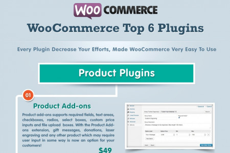 Top 6 WooCommerce Plugin for Ecommerce Store – Infographic Infographic