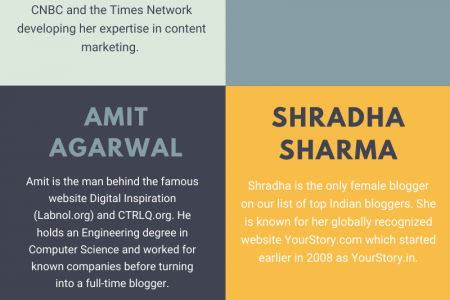 Top Bloggers in india Infographic