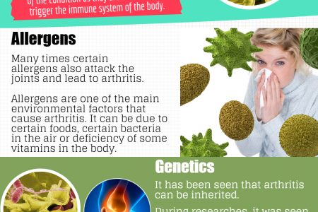 Top Causes of Rheumatoid Arthritis and Everything you Should Know about It Infographic