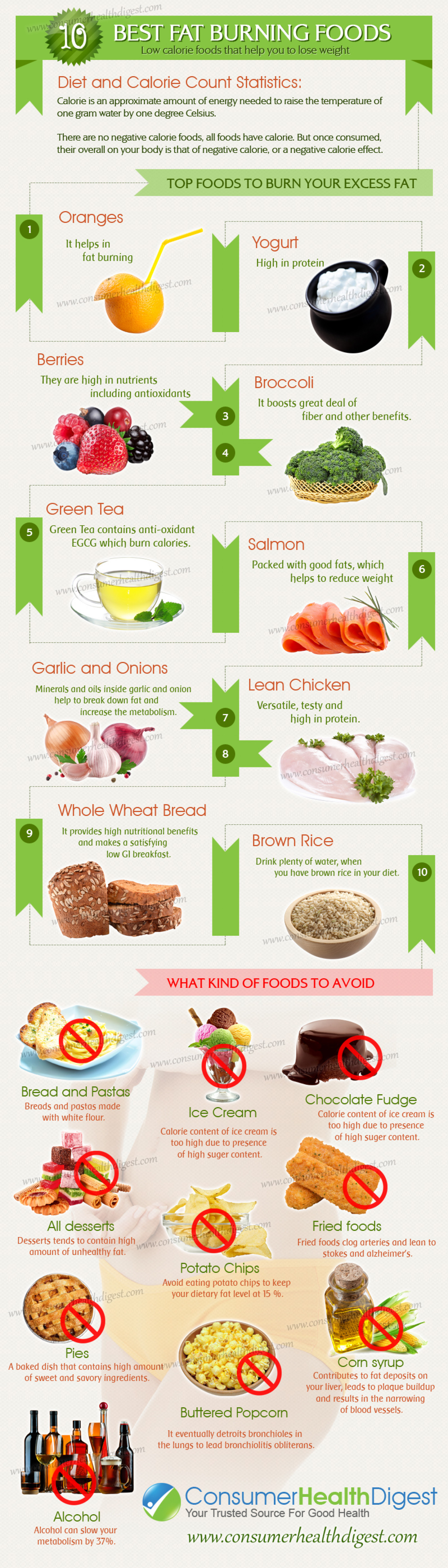 Best Fat Burning Fats  Infographic