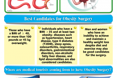 Top obesity clinics in South Korea Infographic
