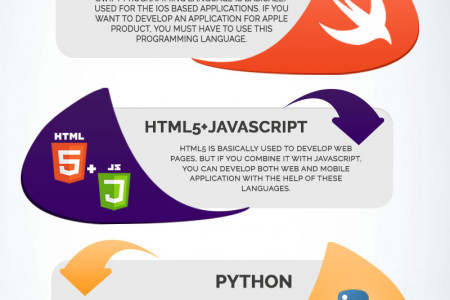 Top Programming Languages For Mobile Application Development Infographic