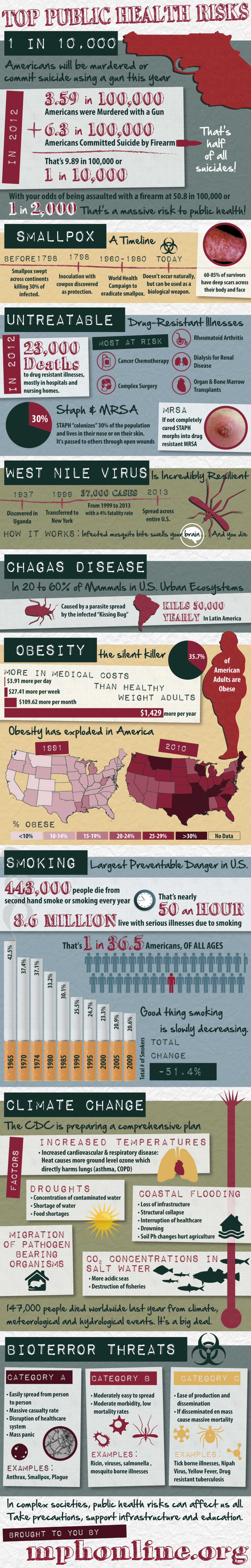 Top Public Health Risks Infographic