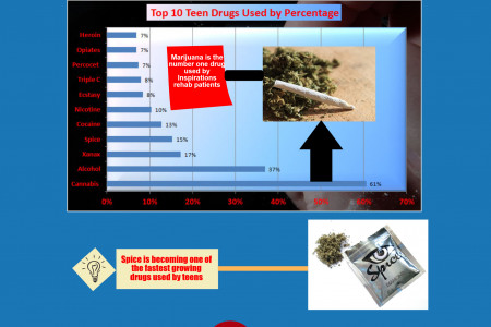 Top Ten Teen Drugs Used by Percentage Infographic