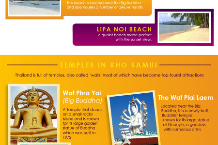 Top Things You Can Do in Koh Samui Infographic