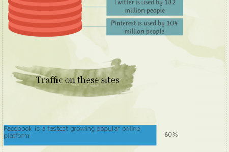 Top Three Social Media Website Infographic