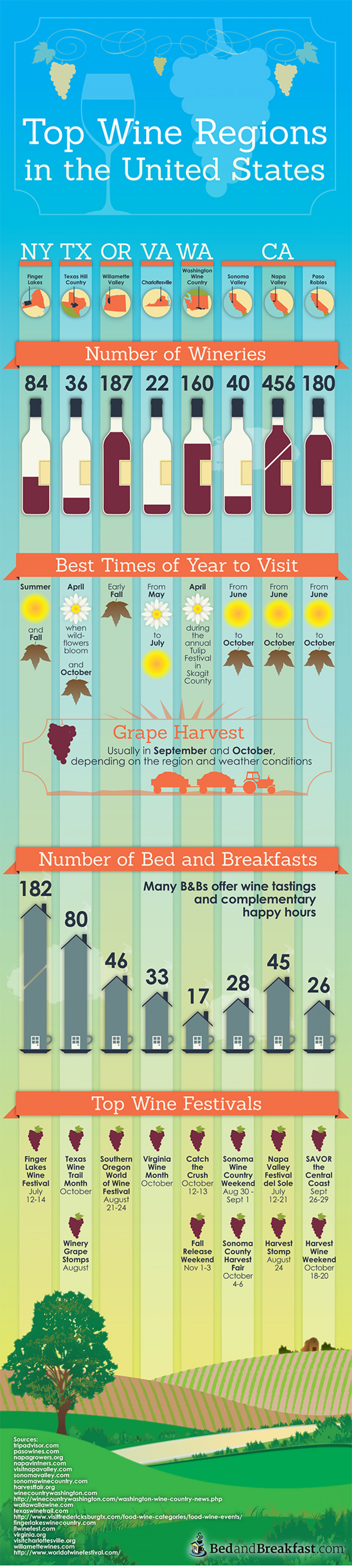 Top Wine Regions in the United States Infographic