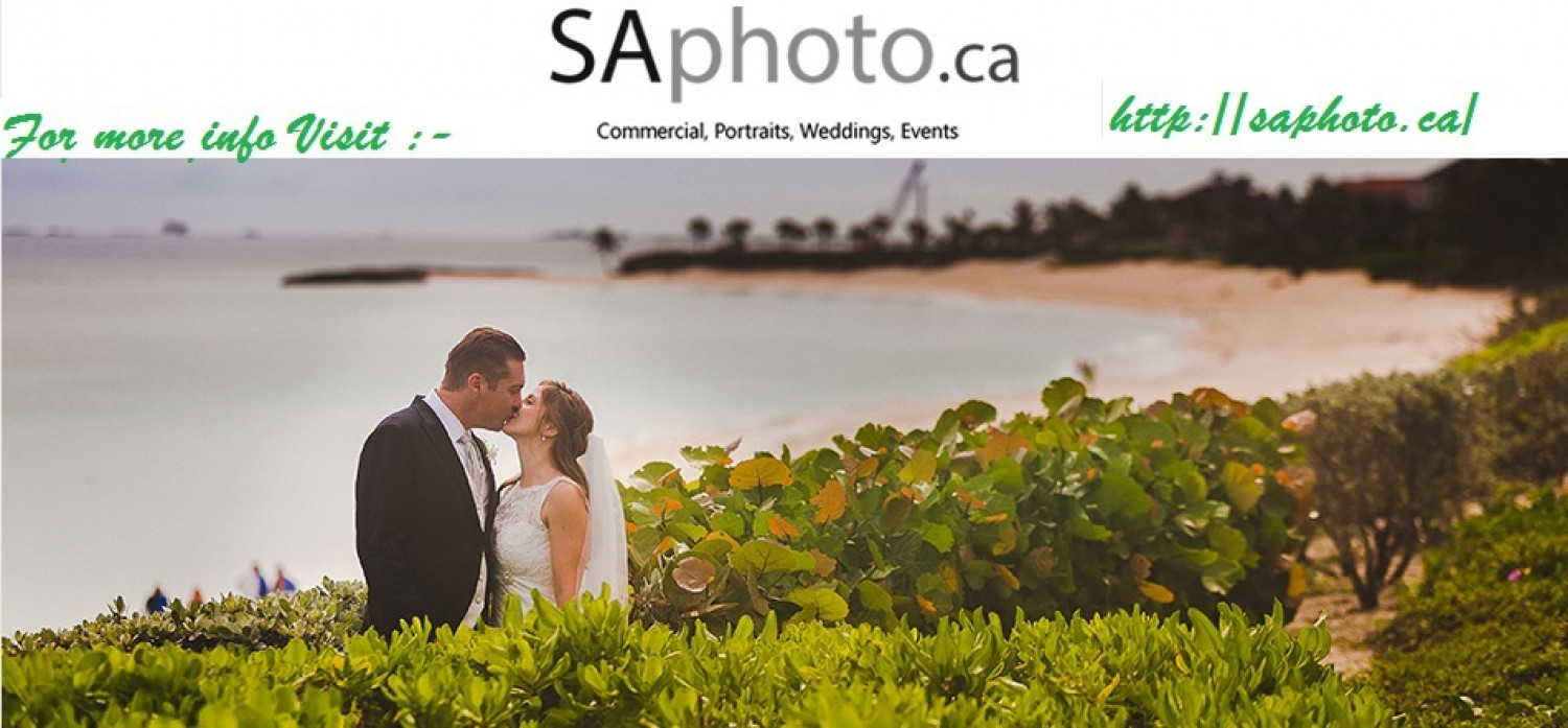 Toronto Wedding Photographer Infographic