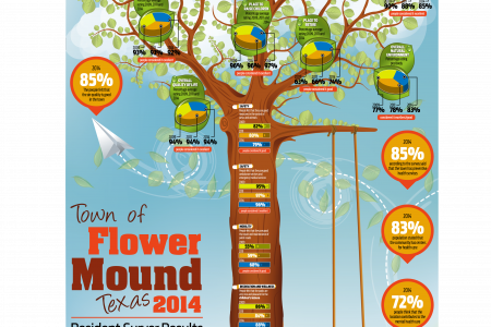 Town of Flower Mound Infographic