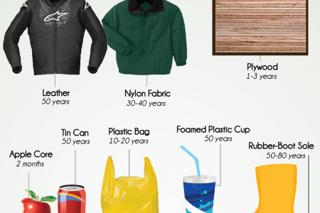 Trash - How Long It Really Lasts  Infographic