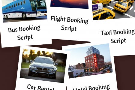 Travel Booking Script Infographic