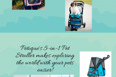 Travel with Your Pets Infographic