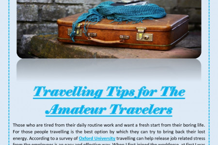 Travelling Tips for The Amateur Travelers Infographic