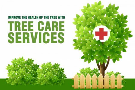 Tree Care Services Infographic