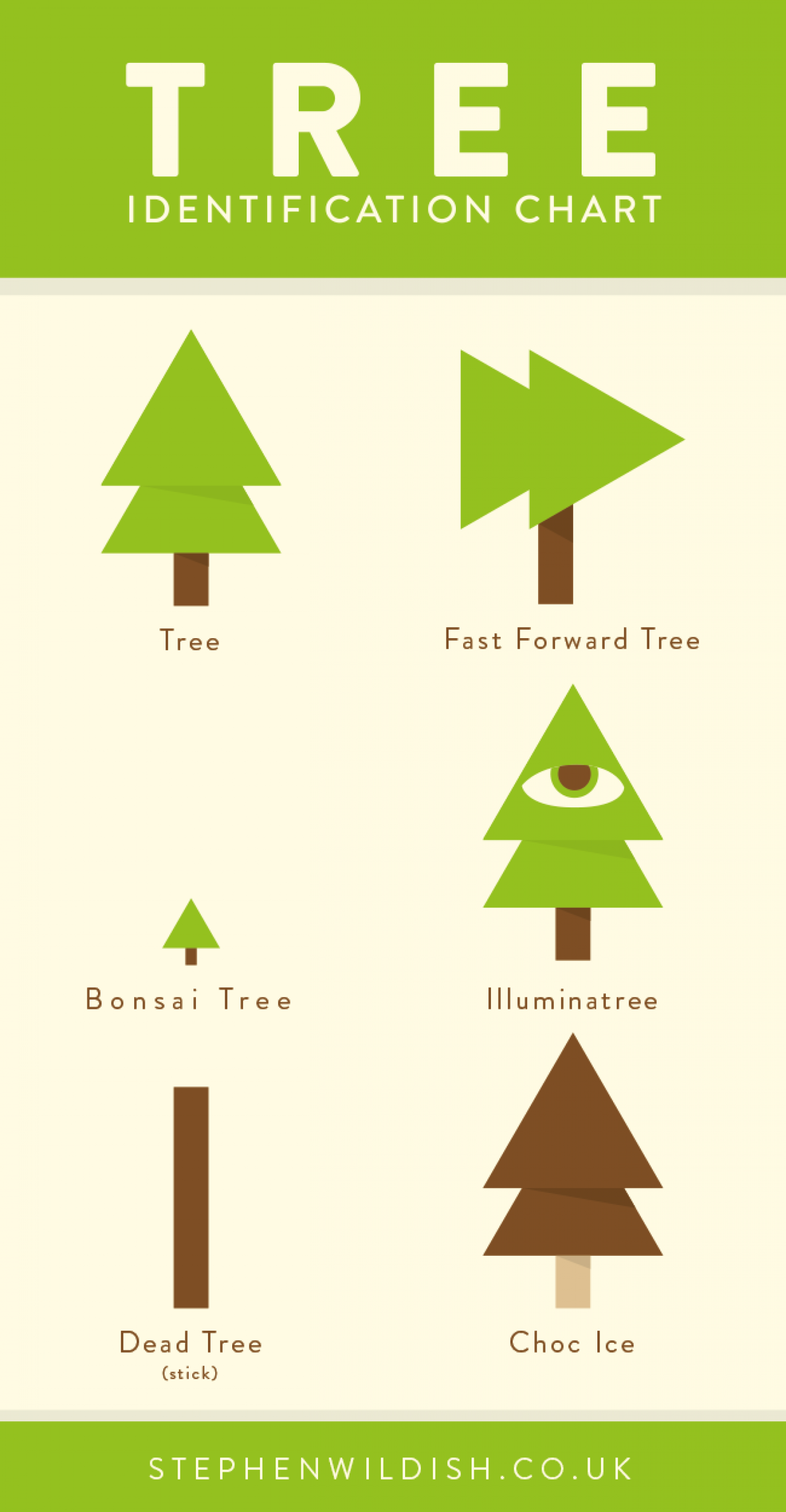 Trees Identification Chart Infographic
