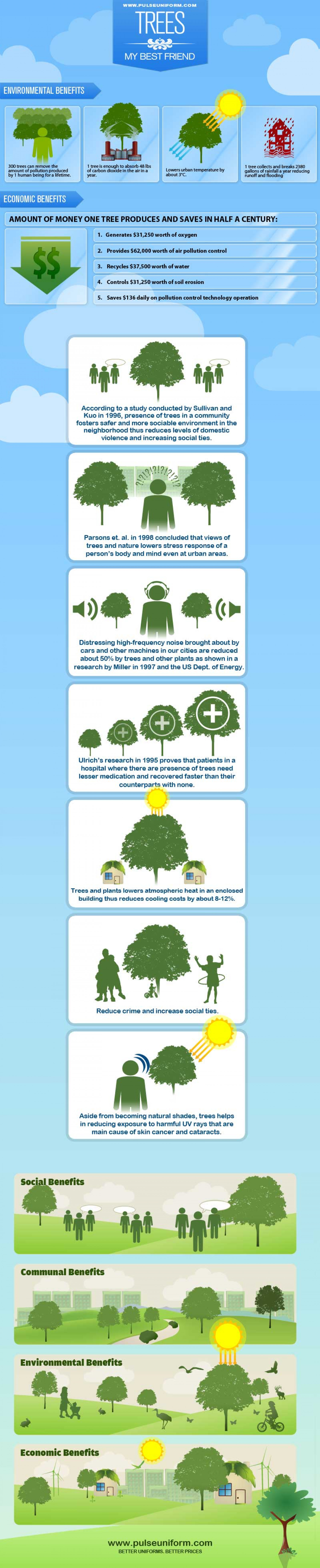 Trees Our Best Friends Infographic