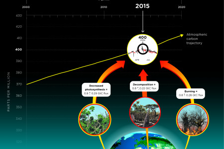 Tropical forests on three continents cause record spike in atmospheric carbon Infographic