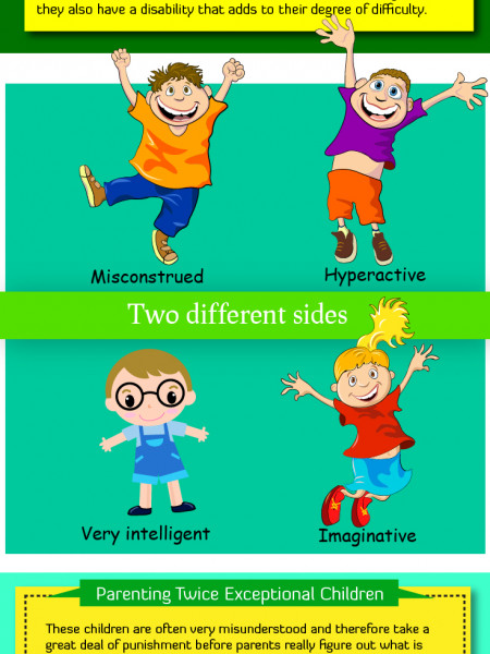 Twice Exceptional Children Infographic