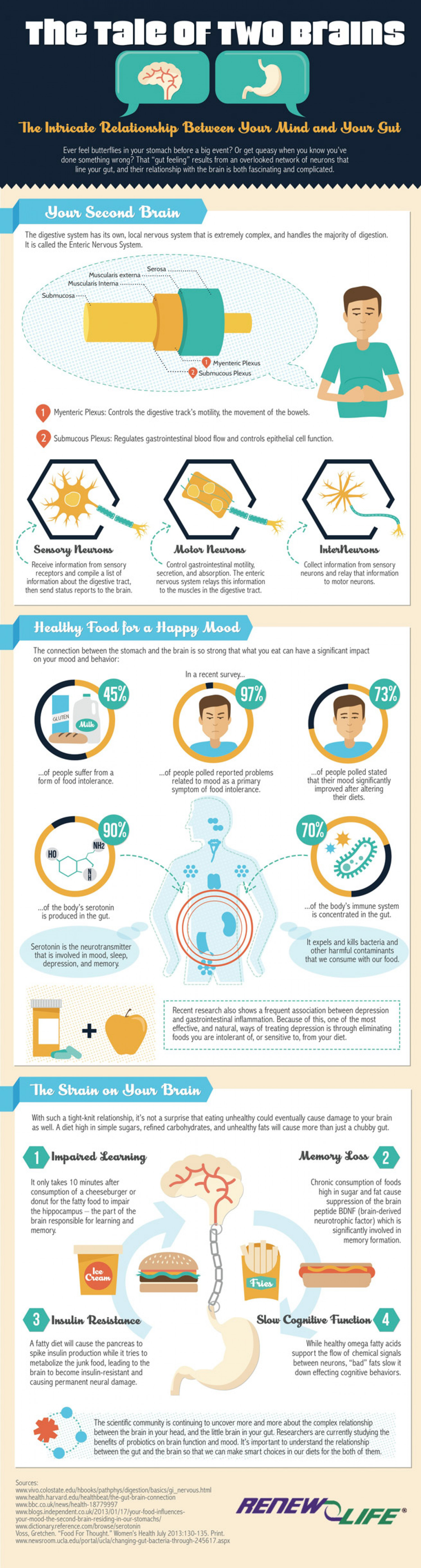 Two Brains, One Body: Your Gut and Your Mind Infographic