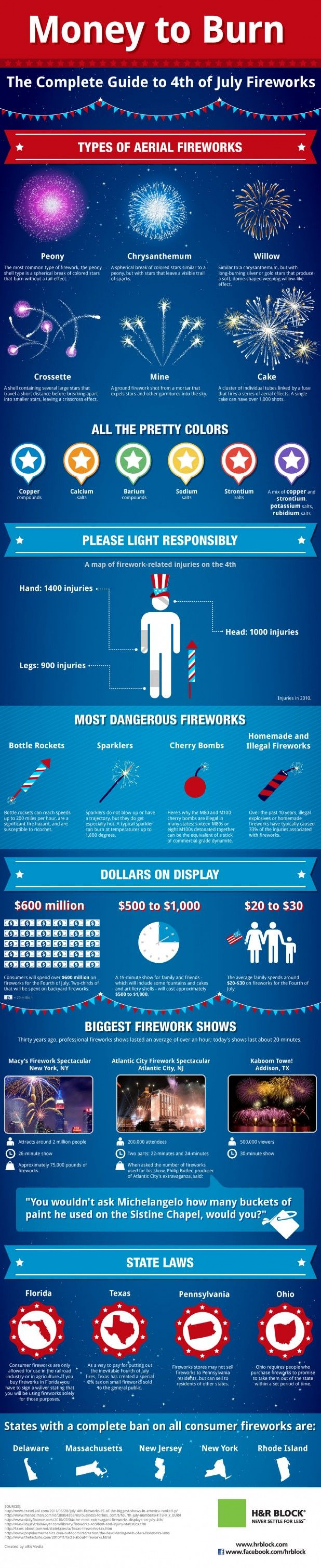 Types of aerial fireworks Infographic