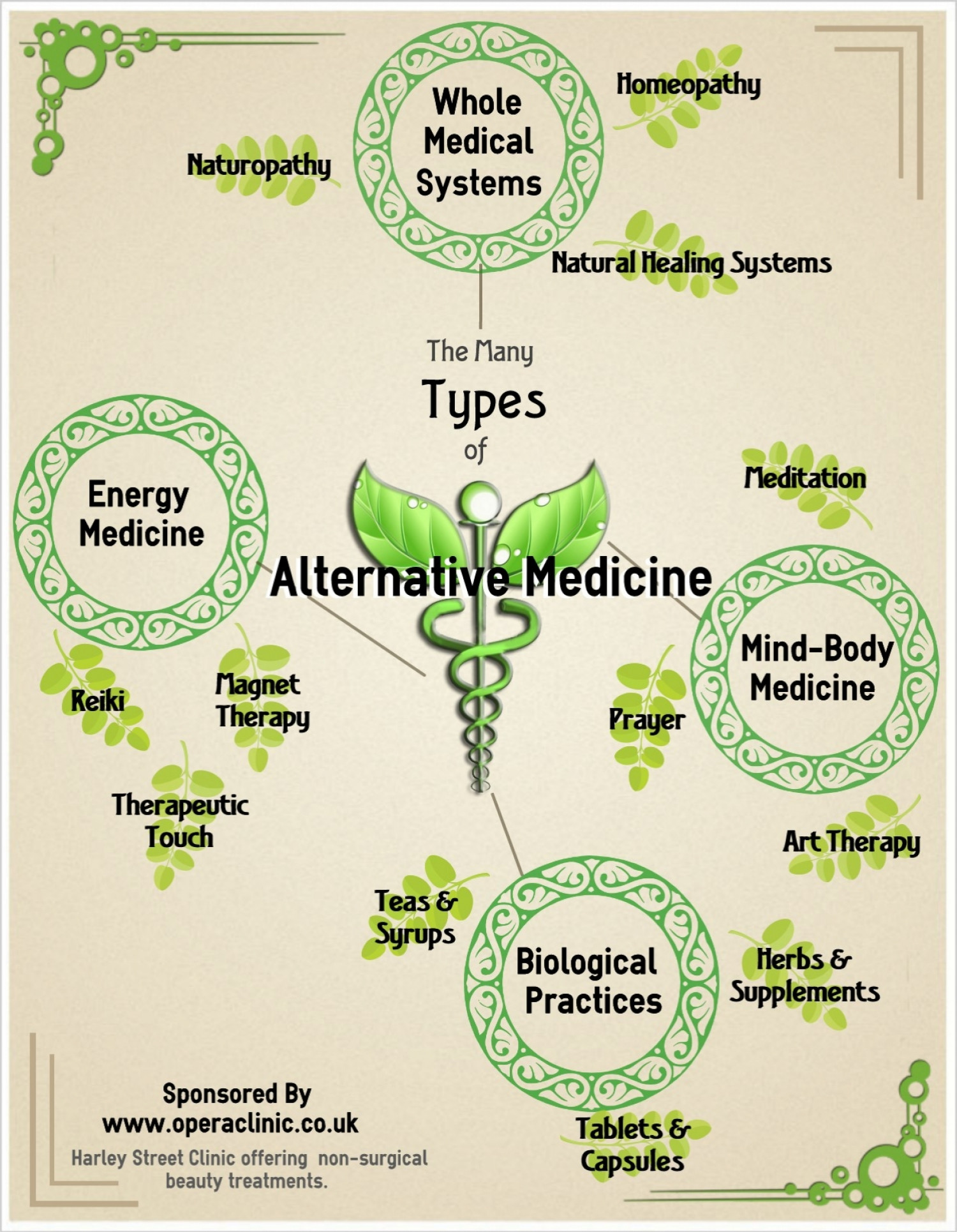 Types of Alternative Medicine Infographic