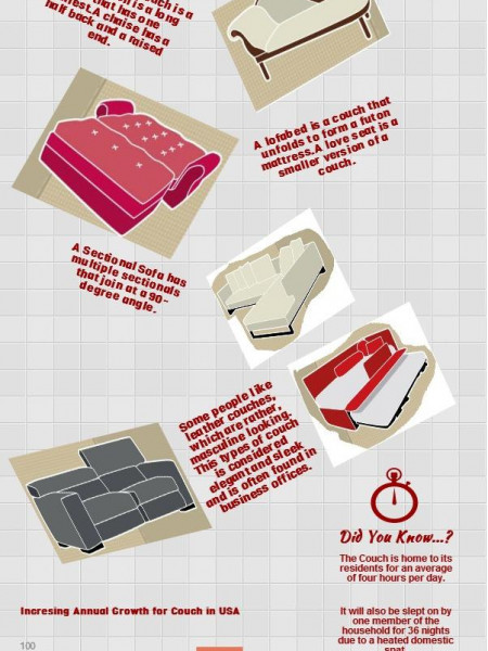 Types of Couches for Sofa Infographic