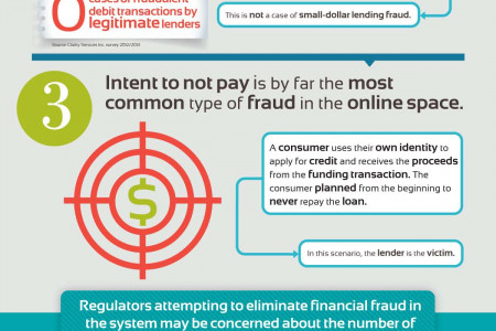 Types of Fraud in the Small-Dollar Credit Industry Infographic