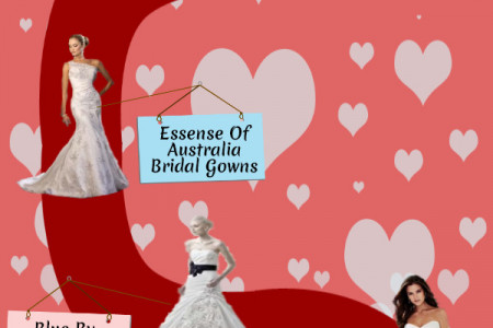 Types Of Wedding Gowns Infographic