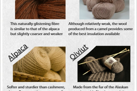 Types of Wool Infographic