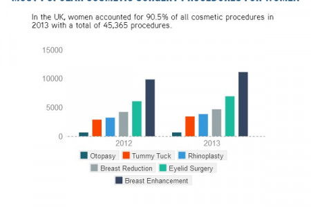 UK Cosmetic Surgery 2013 Infographic
