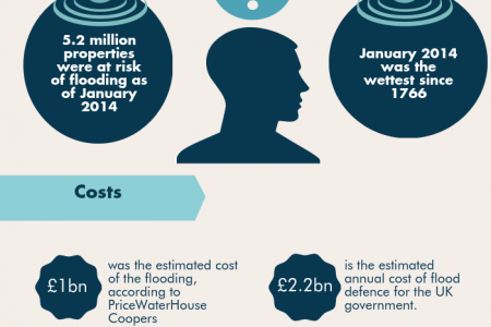 UK Floods 2014: The Cost  Infographic