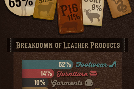 Ultimate Guide to Leather Infographic Infographic