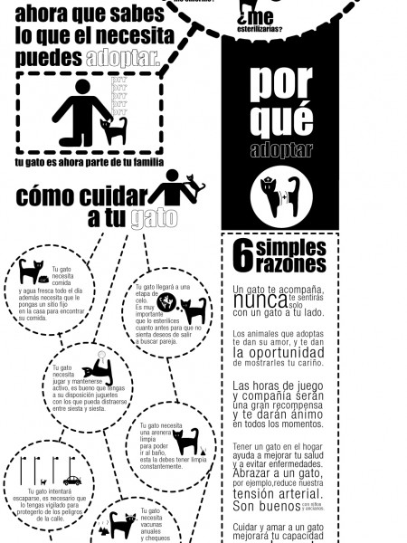 Un gato te hara feliz  / A cat will make you happy Infographic